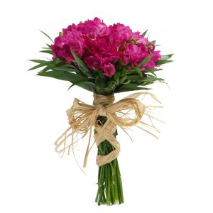 Bouquet de Frésias Cor de Rosa-0