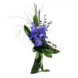 Ramo de Orquídeas Vanda-0