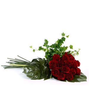Rosas Vermelhas-0