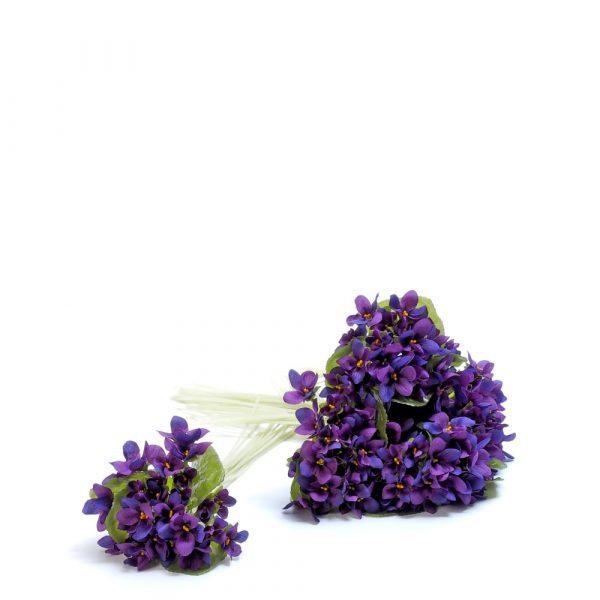 Violetas-0